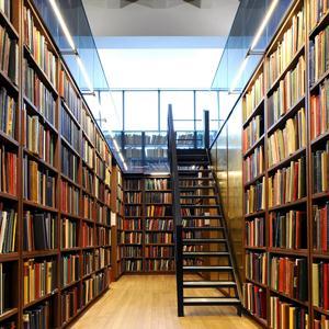 Библиотеки Шатурторфа