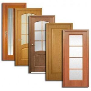 Двери, дверные блоки Шатурторфа