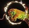 Цирки в Шатурторфе