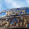 Зоопарки в Шатурторфе